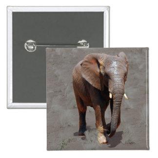 Elefante africano pins