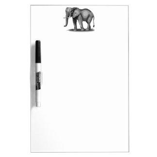 Elefante africano tablero blanco