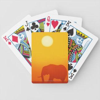 Elefante africano que camina en la puesta del sol, baraja de cartas
