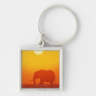 Elefante africano que camina en la puesta del sol, llavero personalizado