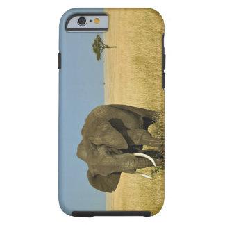 Elefante africano que pasta en hierba alta del funda de iPhone 6 tough