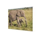Elefante africano y cachorro (africana del impresión en lienzo