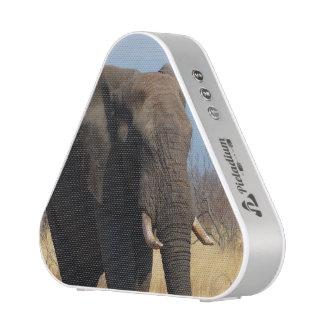 Elefante Altavoz