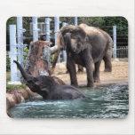 Elefante asiático alfombrillas de ratones