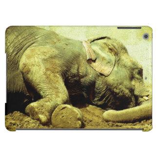 Elefante asiático - caja del aire del iPad