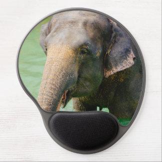 Elefante asiático en el agua verde, foto animal alfombrilla gel