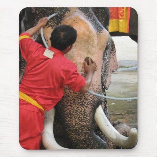 Elefante Bathtime… Ayutthaya, Tailandia Mouse Pad