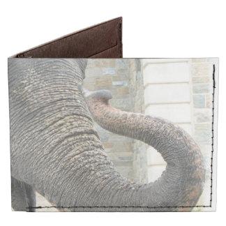 Elefante Billeteras Tyvek®