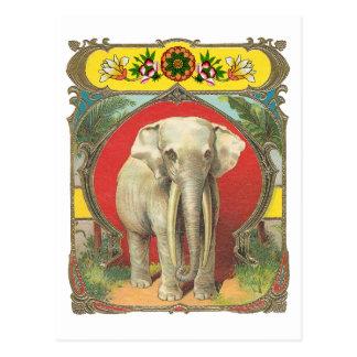 Elefante blanco postal