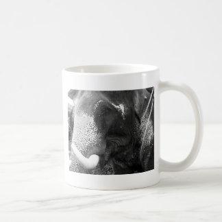 Elefante blanco y negro taza