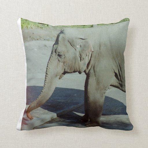 Elefante Cojin