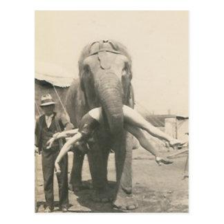 elefante con el chica en postal de la boca