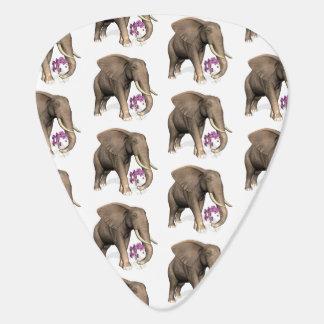 Elefante con la orquídea rosada plumilla de guitarra