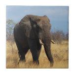 Elefante de Africian Tejas Ceramicas