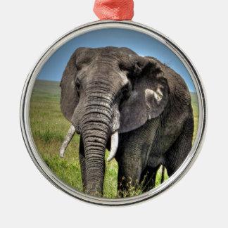 Elefante de Barb Craven_HDR Print.jpg Ornamento Para Reyes Magos