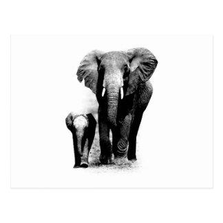 Elefante de BW y elefante del bebé Postales
