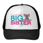 Elefante de la hermana grande otra vez gorras