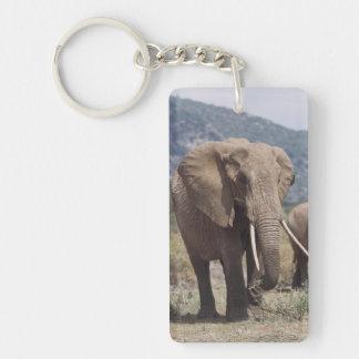 Elefante de la madre que camina con el becerro del llavero rectangular acrílico a doble cara