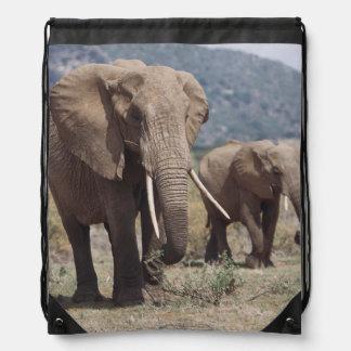 Elefante de la madre que camina con el becerro del mochilas