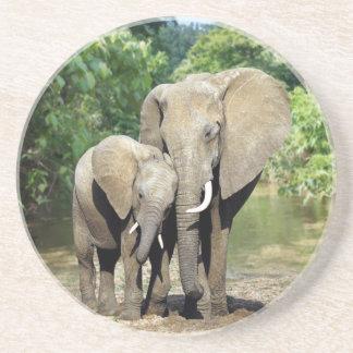 Elefante de la madre y del bebé posavasos manualidades