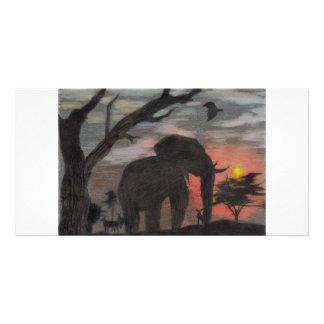 Elefante de la sombra tarjeta fotográfica personalizada