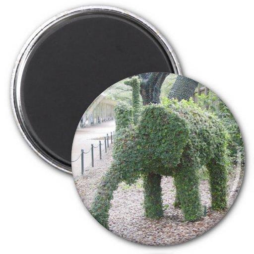 Elefante del árbol imán redondo 5 cm
