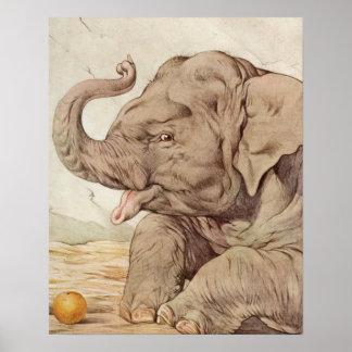 Elefante del bebé de E.J. Detmold Póster