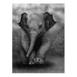 Elefante del bebé postal