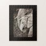 Elefante del bebé puzzle