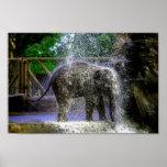 Elefante del bebé que juega en cascada impresiones