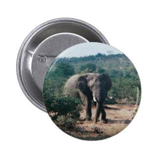 Elefante del botón pin