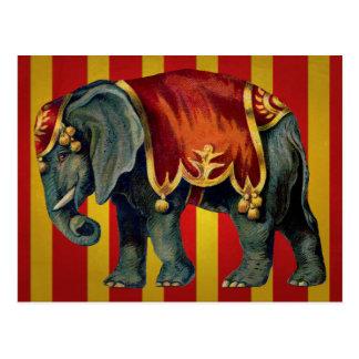 elefante del circo del vintage postales