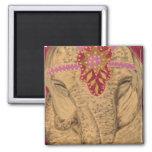Elefante del circo iman para frigorífico