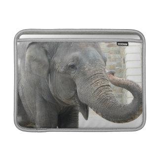"Elefante el tocar la trompeta 13"" manga de MacBook Fundas MacBook"