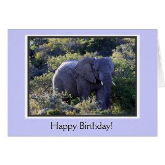 Elefante en feliz cumpleaños de los árboles tarjeta