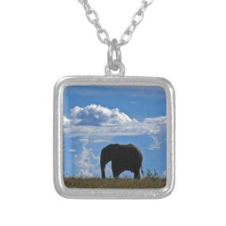 Elefante en Kenia Grímpola