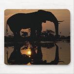 Elefante en la puesta del sol Mousepad Alfombrillas De Ratón
