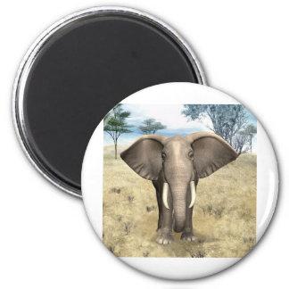 Elefante en la sabana imanes