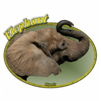 Elefante en óvalo imán fotoescultura