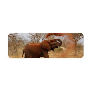 Elefante Etiqueta De Remite