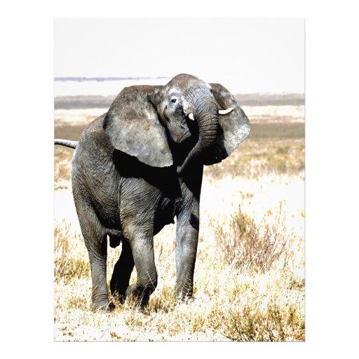Elefante feliz de la paz y de la alegría del baile plantillas de membrete