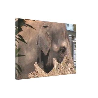 Elefante feliz impresión de lienzo