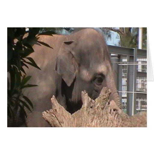Elefante feliz tarjeta de felicitación