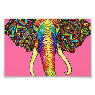Elefante Fotografías