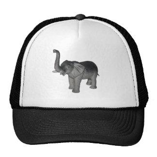 Elefante Gorras