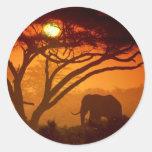 Elefante hermoso de la puesta del sol etiquetas redondas