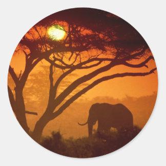 Elefante hermoso de la puesta del sol pegatina redonda