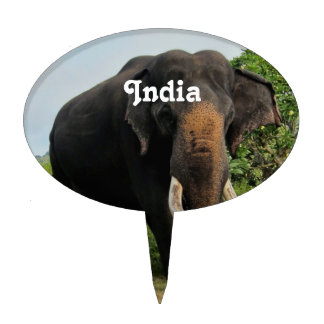 Elefante indio decoración de tarta