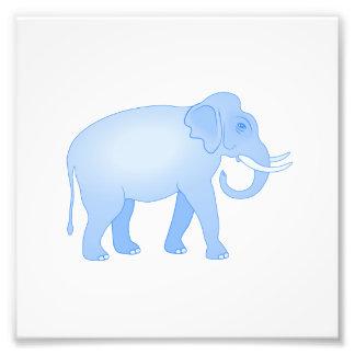 Elefante indio azul cojinete