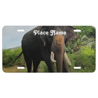 Elefante indio placa de matrícula